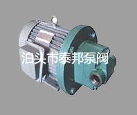 RYB电动内啮合齿轮泵